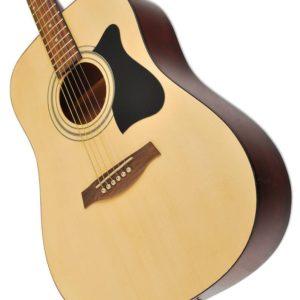 Прокат гитары IBANEZ PF 15 NT