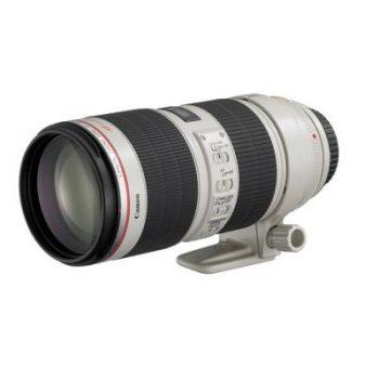 Аренда объектива Canon EF 70-200 mm f/2.8 L USM, прокат объектива Canon EF 70-200 mm f/2.8 L USM